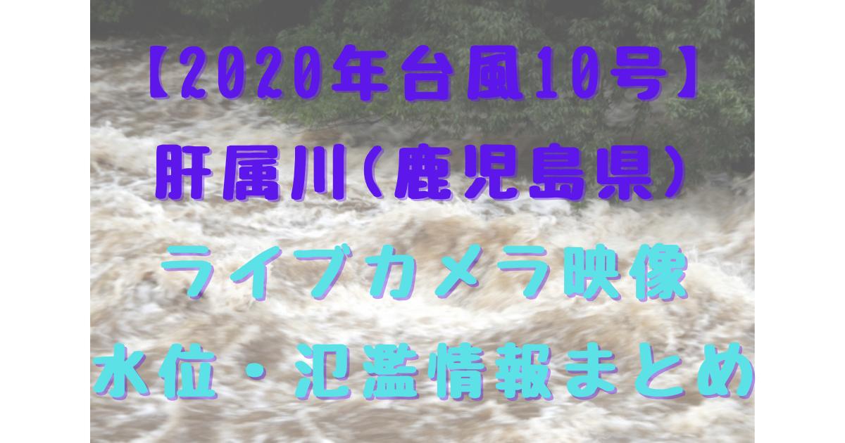 【2020年台風10号】肝属川(鹿児島県) ライブカメラ映像 水位・氾濫情報まとめ